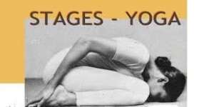 Stages de Yoga et Animations