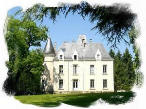 Château de La Roche Cerizay 79