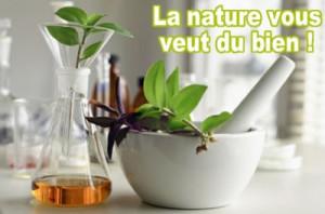 phytothérapie-e1372723095437