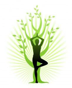 Le Yoga des arbres